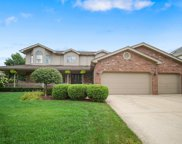 8113 Mallow Drive, Tinley Park image