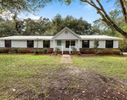 8673 Nw 155th Rd. 32064, Live Oak image