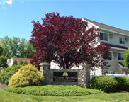 237 Willow  Springs Unit 237, New Milford image