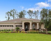 12311 Nora Grant Place, Riverview image