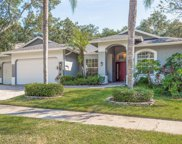 1704 Country Trails Drive, Safety Harbor image