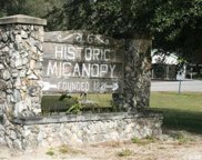 000 Se Wacahoota Road, Micanopy image