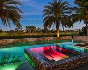 11781 Calleta Court, Palm Beach Gardens image