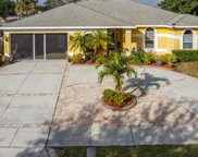 1006 Connecticut Road, Tarpon Springs image