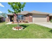 8813 Moon Rise Court, Fort Worth image