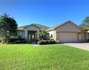 11811 Se 91st Circle, Summerfield image