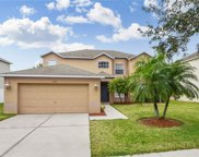 11332 Callaway Pond Drive, Riverview image
