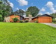 11404 Riddle Drive, Spring Hill image