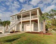 113 Coral Tulip Court, Wilmington image