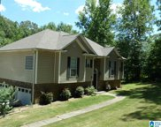 155 Bill Smith Road, Trussville image