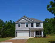 1534 Old Lexington Highway, Chapin image