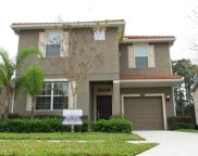 2981 Buccaneer Palm Road, Kissimmee image