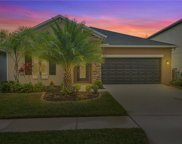 19154 Alexandrea Lee Court, Land O' Lakes image