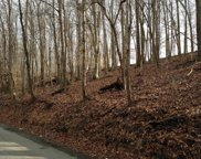 Old Cave Springs Rd, Tazewell image