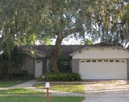 12123 Fruitwood Drive, Riverview image