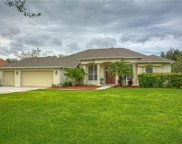 12309 Creek Edge Drive, Riverview image