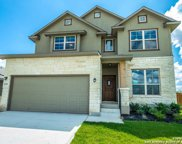 2939 Daisy Meadows, New Braunfels image