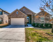 236 Bee Caves Cove, Cibolo image