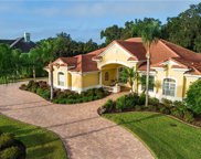 13435 Carnoustie Circle, Dade City image