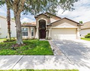 31239 Chatterly Drive, Wesley Chapel image