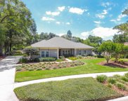 17920 Clear Lake Drive, Lutz image
