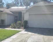 12121 Fruitwood Drive, Riverview image