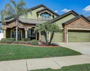 3514 Starling Estates Court, Valrico image