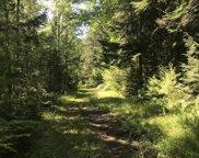 21 Black Swamp Road, Denmark image