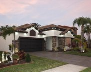 11852 Frost Aster Drive, Riverview image