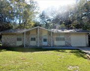 923 Kendall, Tallahassee image