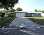 1513 Booth Drive, Valrico image