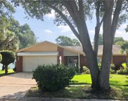 7103 Lawnview Court, Tampa image