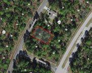 9169 N Saponaria Drive, Citrus Springs image