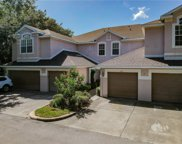 3581 Country Pointe Place, Palm Harbor image