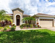 20214 Moss Hill Way, Tampa image