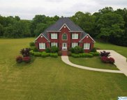 665 County Rd 420, Cullman image