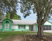 12493 Fish Cove Drive, Spring Hill image