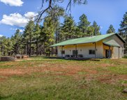 12363 Bluebird Meadow Rd Road, Parks image
