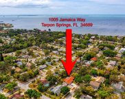 1005 Jamaica Way, Tarpon Springs image