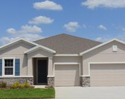 3508 Autumn Amber Drive, Spring Hill image