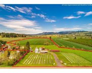 17733 NE NORTH VALLEY  RD, Newberg image