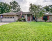 12463 BLUEBERRY WOODS CIR E, Jacksonville image