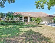 11675 Night Heron Dr, Naples image