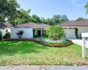 11401 Twelve Oaks Way, North Palm Beach image