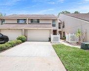 4211 Hartwood Lane, Tampa image