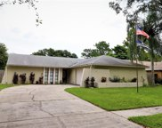15807 Cottontail Place, Tampa image
