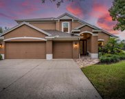 17203 Keely Drive, Tampa image