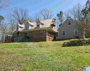316 Turkey Hollow Lane, Ashville image