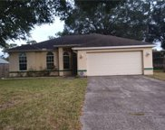 3838 Briarbrook Place, Land O' Lakes image