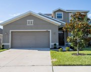 2434 Dovesong Trace Drive, Ruskin image